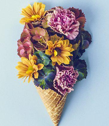 fleurs-home-blog