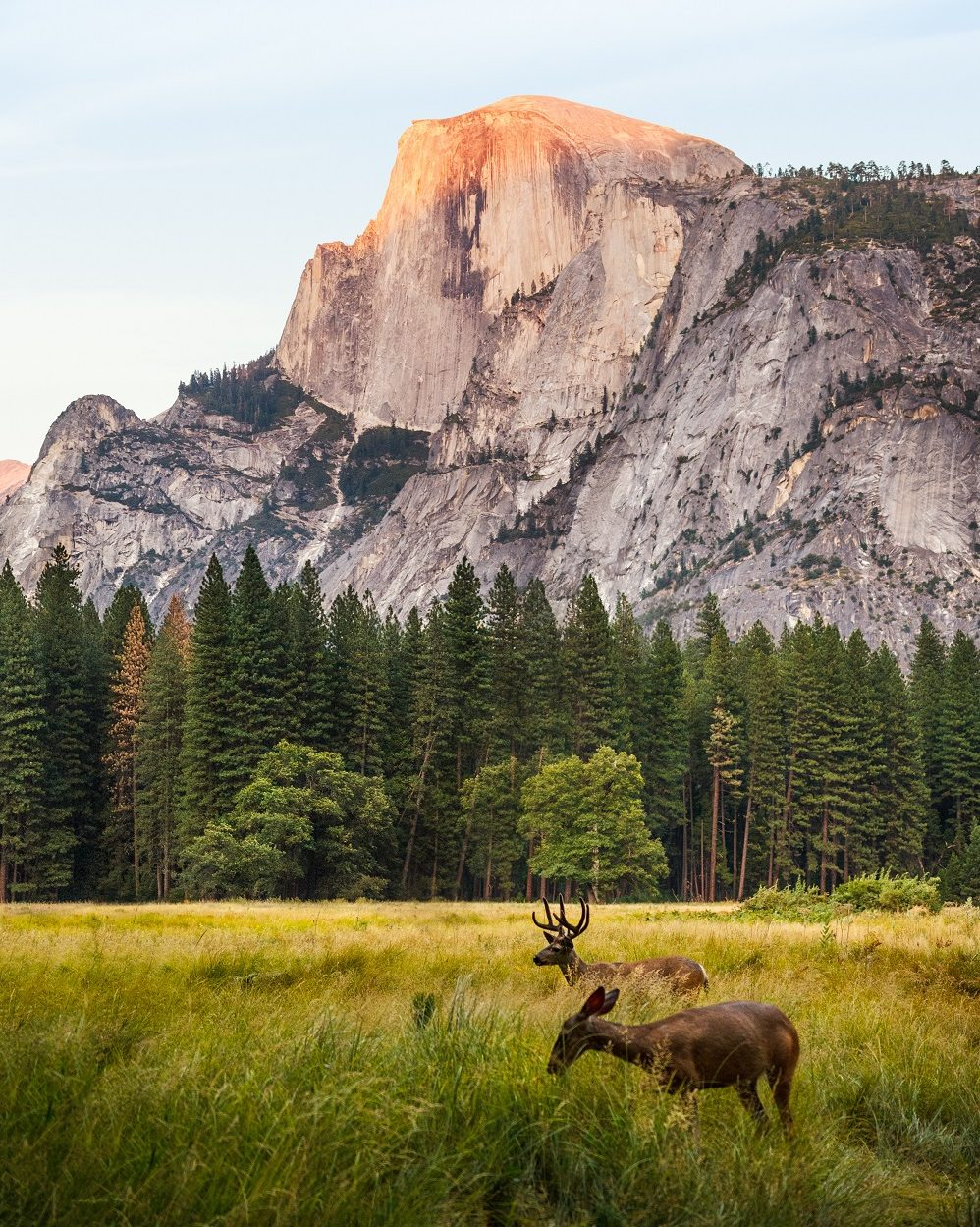 Voyage dans l'ouest américain - Yosemite - showroomprive