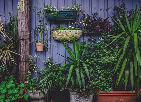 Ventes pour réaliser sa Garden Party sur Showroomprivé.