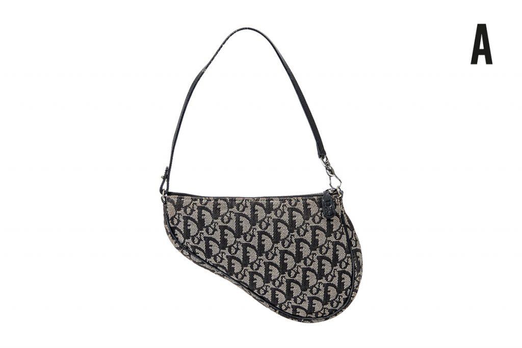 Dior sac porté épaule Trotter Saddle