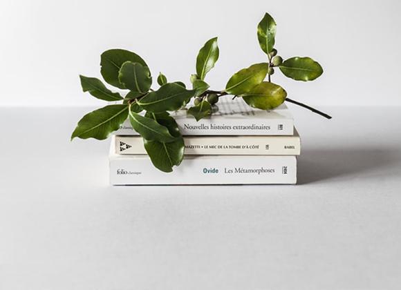 5 livres à lire une fois dans sa vie